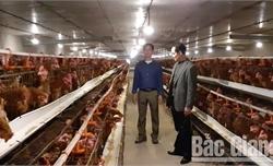 Xây dựng tổ chức hội vững mạnh, góp phần phát triển nông nghiệp, nông thôn