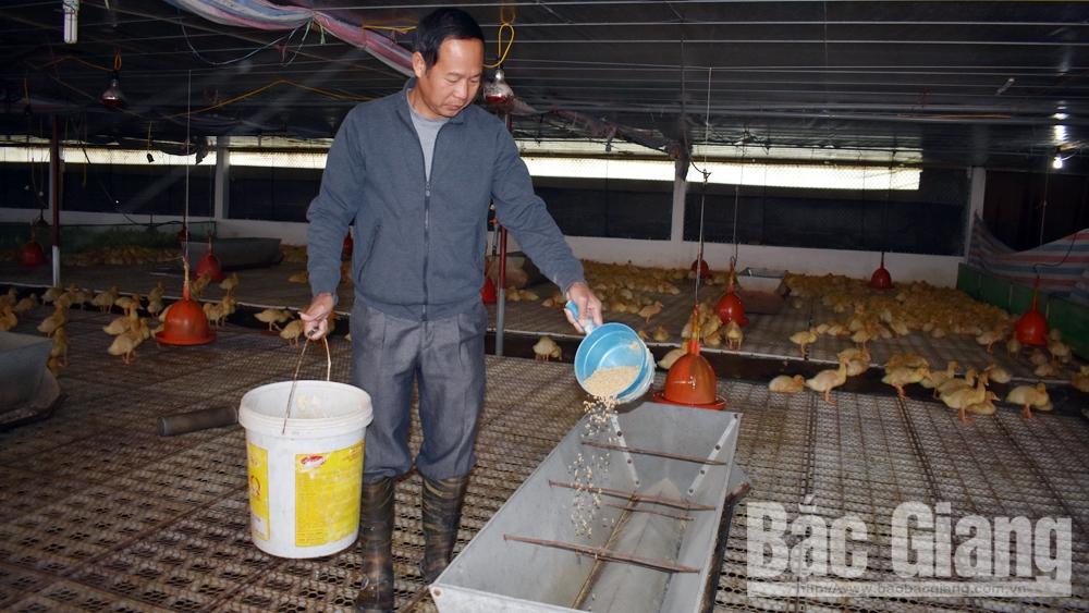Ông Nguyễn Văn Tuấn: Điển hình sản xuất, kinh doanh giỏi