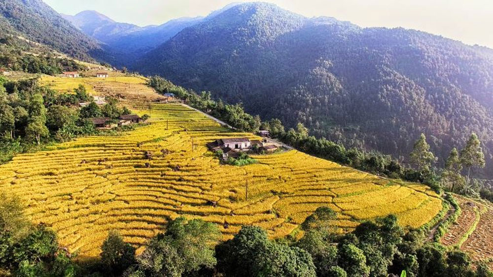 Binh Lieu, Sa Pa, northeastern Vietnam, Quang Ninh province, cool weather, mesmerizing views, Ceylon cinnamon forests