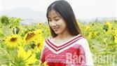 Ngày đầu năm mới, hàng nghìn du khách tham quan Khu du lịch tâm linh- sinh thái Tây Yên Tử và phim trường Đa Mai