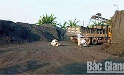 Chủ bãi tập kết than trái phép ở Lạng Giang chưa khôi phục hiện trạng đất lúa