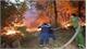 Chủ tịch nước tặng Huân chương cho người phụ nữ quên mình chữa cháy