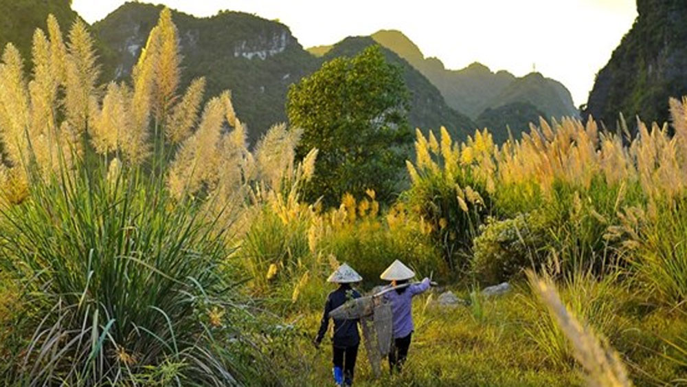 Ninh Binh expects to welcome 7.8 million tourists in 2020