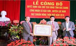 Xã Bảo Sơn (Lục Nam) đạt chuẩn nông thôn mới
