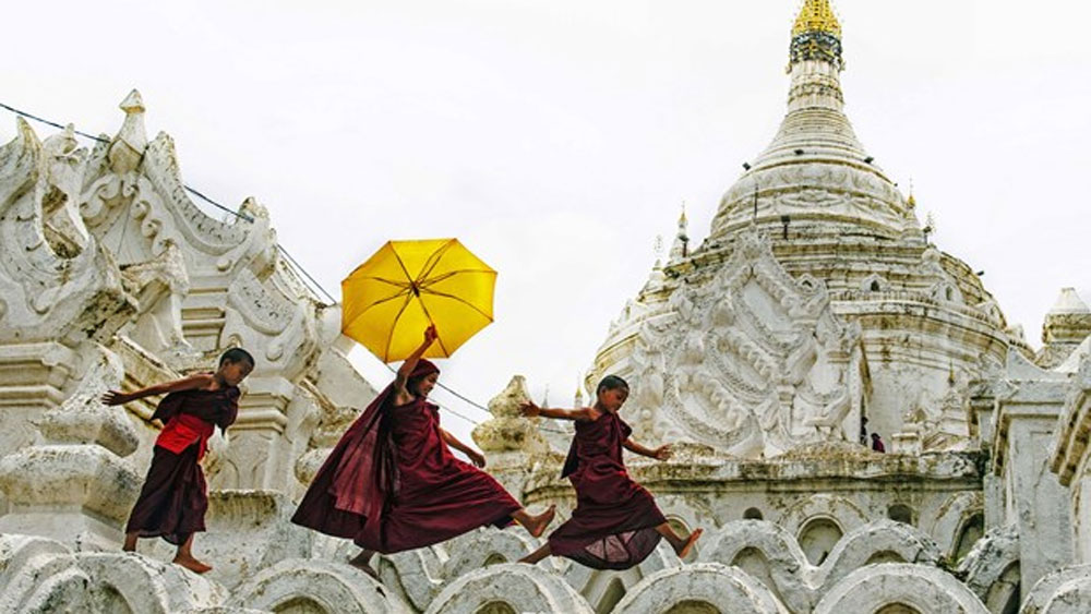Vietnamese photographers win big at India's photo contest