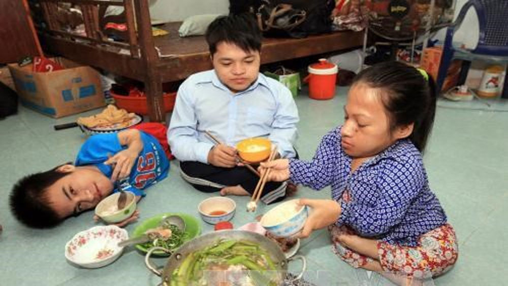 Social protection centre,  AO/dioxin victims, detoxification treatment, Vietnam-RoK friendship