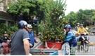 TP Bắc Giang: Nhộn nhịp chợ hoa xuân