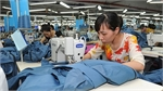 Action needed to return Vietnam to path of high growth