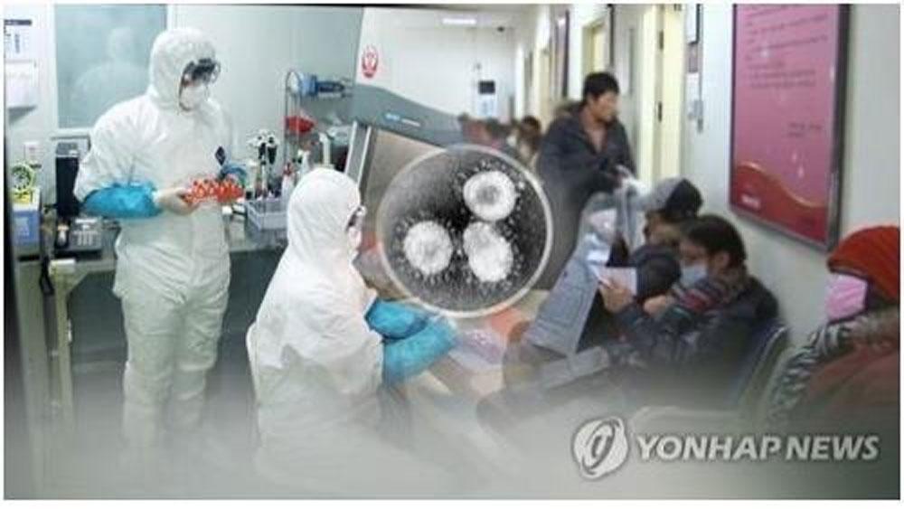 Hàn Quốc, phát hiện ,trường hợp đầu tiên, nhiễm virus corona