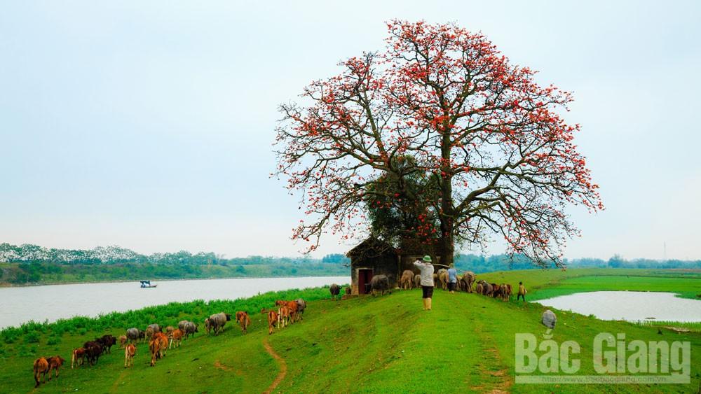 Hồn làng, người Việt Nam, trong tâm thức người Việt, Cánh buồm căng như một mảnh hồn làng