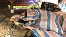Vụ nổ súng làm nhiều người thương vong tại Lạng Sơn: Kẻ thủ ác chết trong rừng