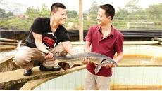Cá tầm, nâng tầm thủy sản