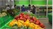 Vietnam targets 5 billion USD from fruit, vegetable exports in 2020
