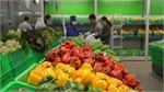 Vietnam targets 5 billion USD from fruit, vegetable exports in 2020