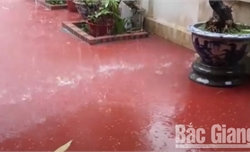 Đề phòng hiện tượng thời tiết cực đoan tại Bắc Giang