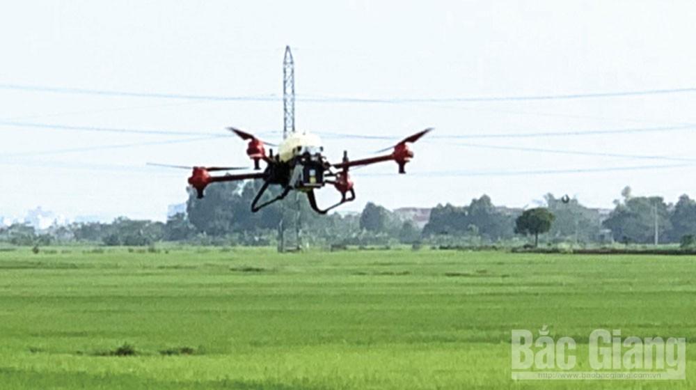 Agriculture under digital era
