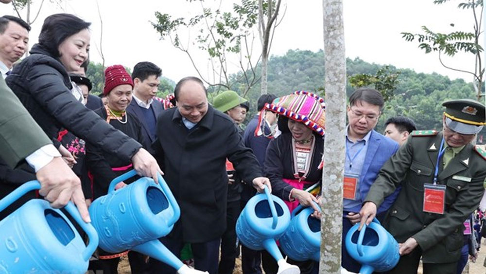 PM, tree planting campaign, Yen Bai province, forest coverage, wood production,  export centre