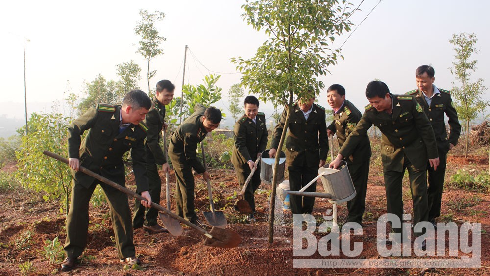 Tree planting campaign, Bac Giang's localities, Bac Giang province, cheerful atmosphere, New Year occasion