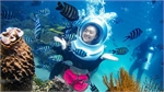 Seabed walk - discover another world on Phu Quoc Island
