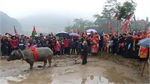 'Going to the field' festival of Tay and Nung ethnic minorities in Bac Giang province