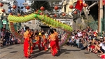 HCM City launches 3rd International Dragon Dance festival