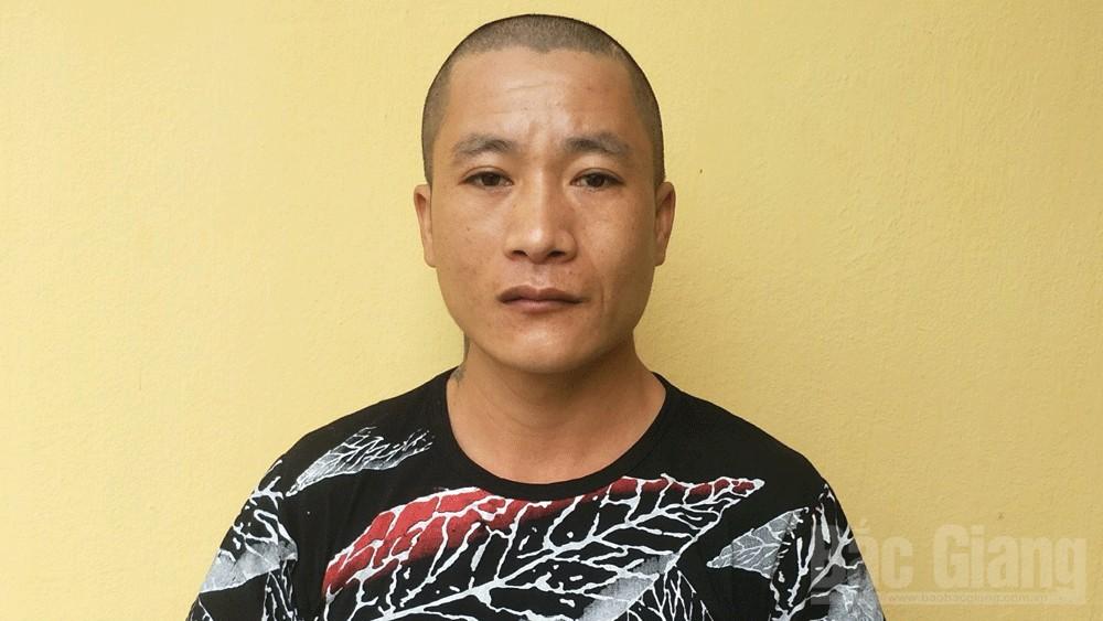 trộm cắp tài sản; Lạng Giang; Bắc Giang.