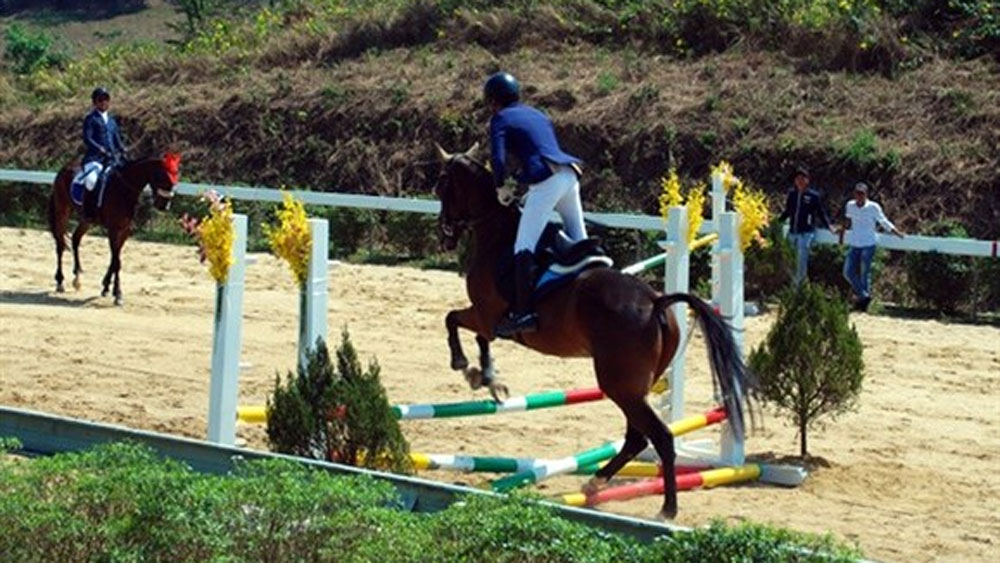 Olympic horse riding club, Lam Dong province, racecourse, training centre, pure bred horses, talented athletes