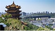 Điều chưa biết về Vũ Hán - ổ dịch viêm phổi tại Trung Quốc