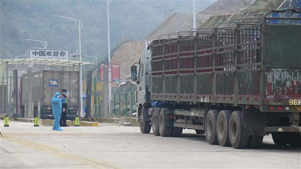 Tan Thanh border gate, Lang Son province, resumes operation, customs clearance, export-import activities