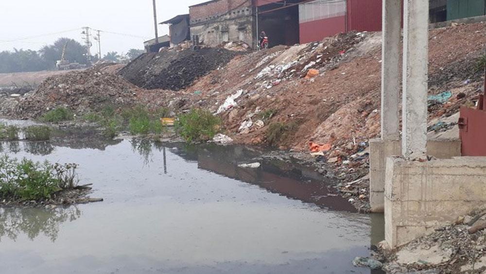 Sông Cầu, ô nhiễm, Bắc Giang, Bắc Ninh, bà Nguyễn Thị Tâm