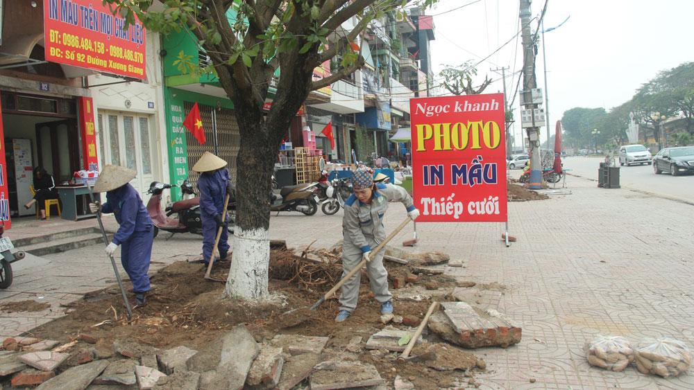 Cải tạo hệ thống cây xanh ở TP Bắc Giang: Bảo đảm cảnh quan đô thị