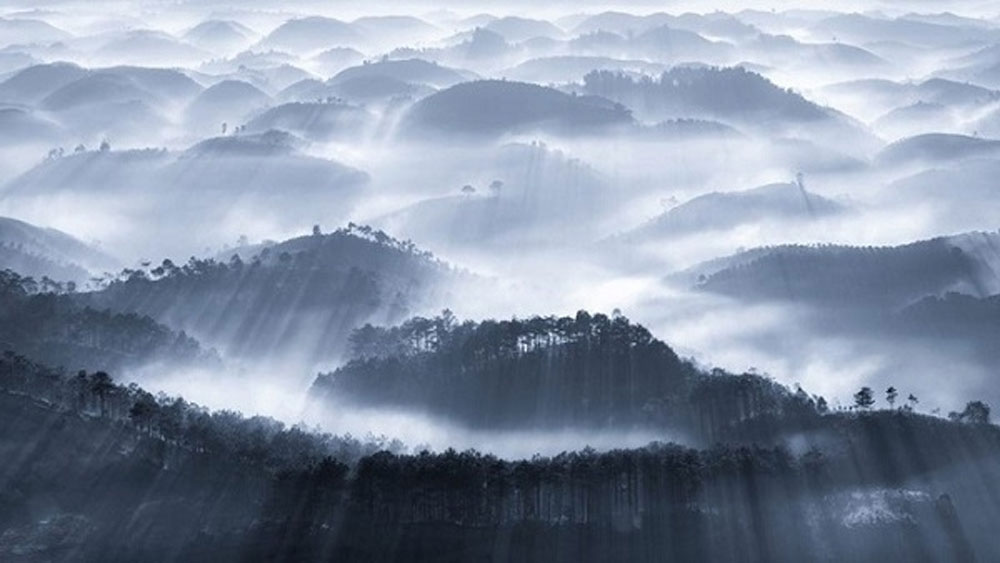 Photos of Vietnam's natural landscapes listed in world's best nature shots by Agora