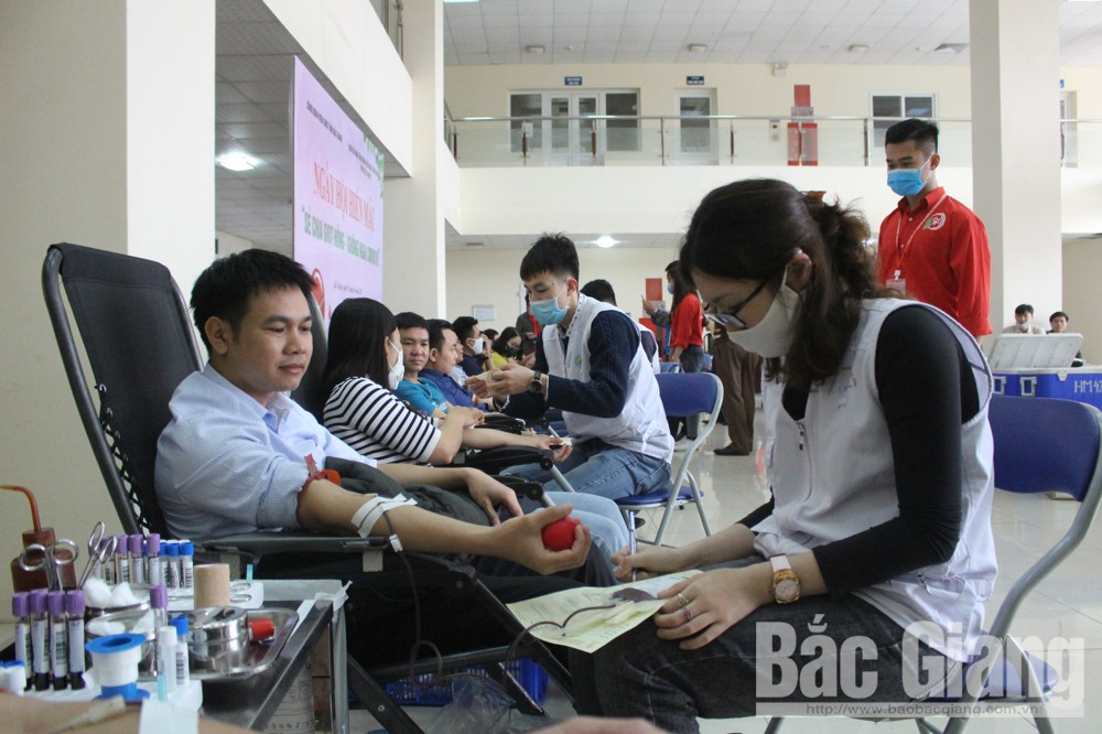 Bac Giang: Nearly 300 members of provincial civil servant's trade union volunteer to donate blood