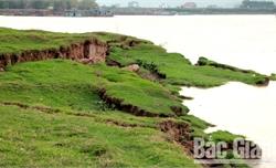 Bãi sông đê hữu Lục Nam liên tiếp sạt lở