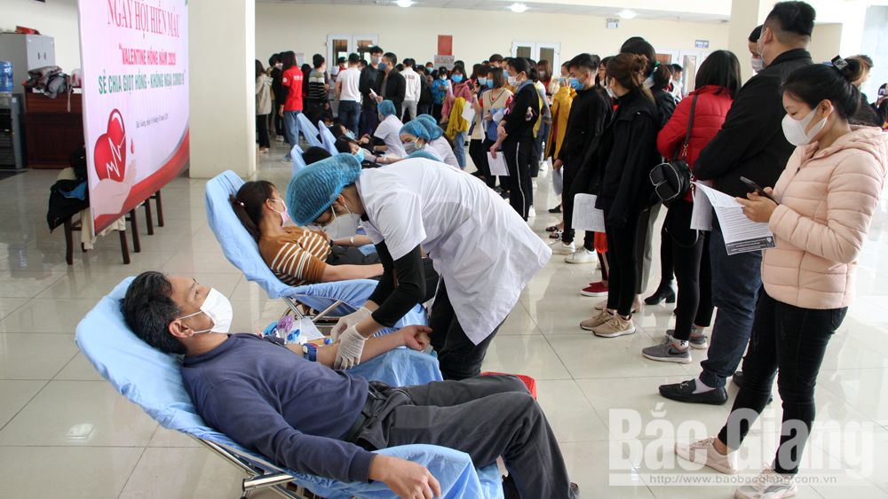 Bac Giang donates 5,375 blood units