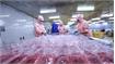 Vietnam-Israel trade surpasses 236 million USD in two months