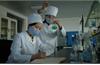 WHO viện trợ giúp Triều Tiên chống dịch Covid-19