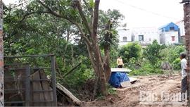 Xã Hồng Thái (Việt Yên) : Yêu cầu nguyên trưởng thôn trả lại đất làm đường