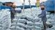 Vietnam to achieve highest growth in region despite Covid-19
