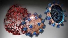 Đột phá trong thử nghiệm thuốc ngăn ngừa Covid-19 giai đoạn đầu