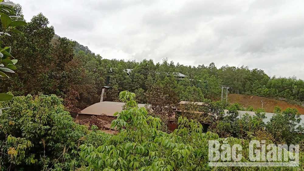 Cơ sở chế biến gỗ ở xã Cẩm Đàn (Sơn Động) gây ô nhiễm môi trường