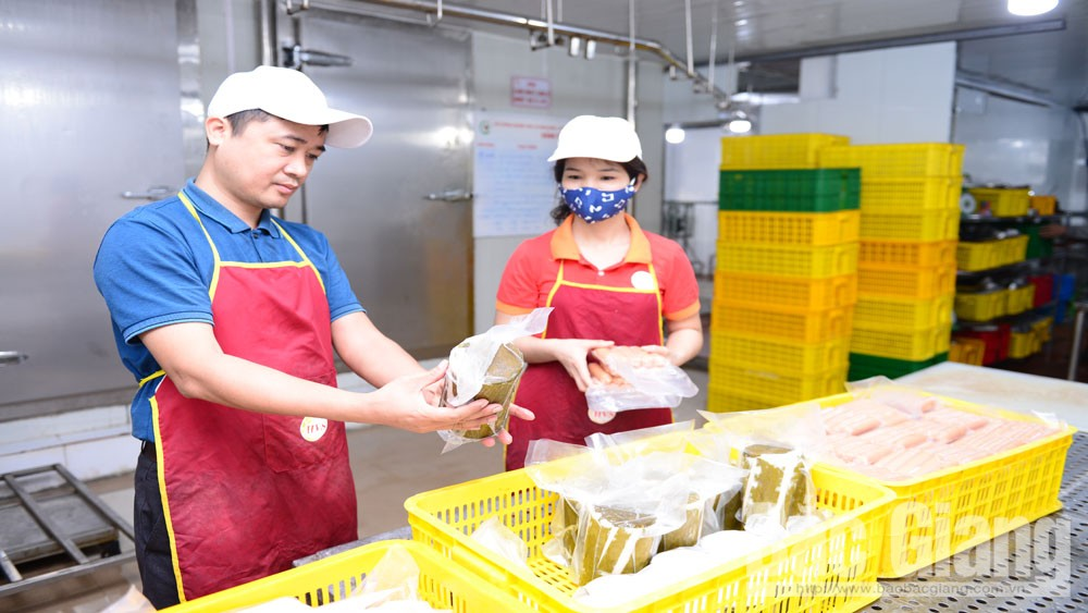 Binh Minh Organic Agriculture Cooperative invests intensively to create high quality products