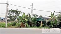 Thị trấn Tân An (Yên Dũng): Công dân tự ý chuyển mục đích sử dụng đất, chính quyền làm ngơ