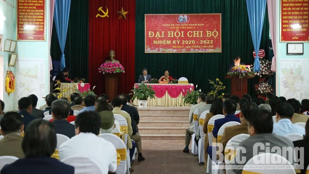 Bắc Giang: 4.000 chi bộ trực thuộc đảng ủy cơ sở hoàn thành đại hội