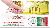 Hút thuốc lá ảnh hưởng xấu đến môi trường sống