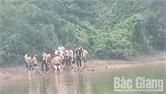Lục Ngạn: Một nam sinh tử vong do đuối nước tại hồ Khuôn Thần