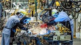 Nhật Bản khuyến khích doanh nghiệp chuyển hoạt động sang Đông - Nam Á