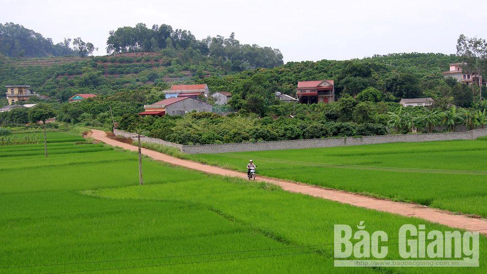 HĐND huyện Lục Ngạn đổi mới, nâng cao chất lượng hoạt động
