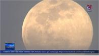 Cơ hội ngắm 'siêu trăng' cuối cùng trong năm 2020