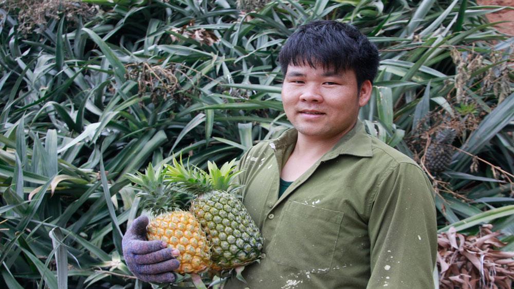 Tam Dị, xuất khẩu lao động, làng xuất ngoại, Bắc Giang, trồng dứa, nuôi chim gáy